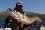 guida-di-pesca-al-luccio