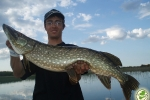 top_water_pike